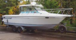 Baha Cruisers 278 Fisherman